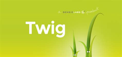 tutorial twig php a 6min video introduction into twig the php templating