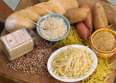 carbohydrates 5 facts 10 facts about carbohydrates fact file