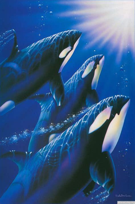 christian riese lassen orca art whale art ocean creatures