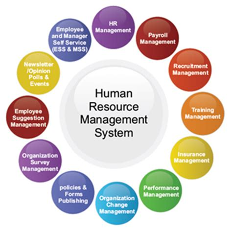 payroll services hr services human capital management view original transformez it business it services consulting seo