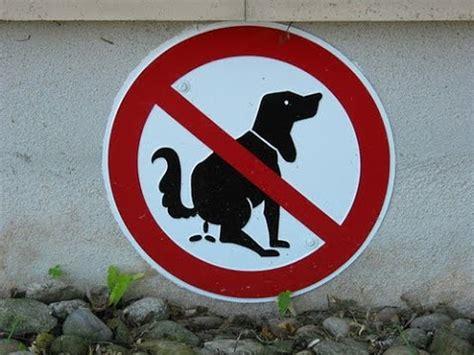 gnocca bagnata 50 funniest road signs