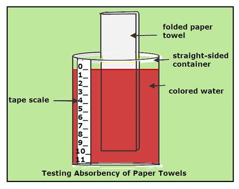 What Makes A Paper Towel Absorbent - science project paper towel water absorbency rate
