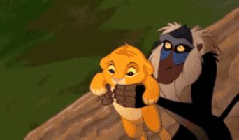 Memes Gifs - the lion king parody gif find share on giphy