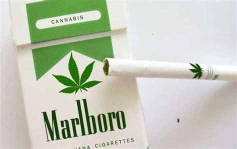 did phillip morris just release a new marlboro marijuana