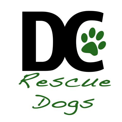 dc adoption and the winner is dc rescue dogs pooch racing