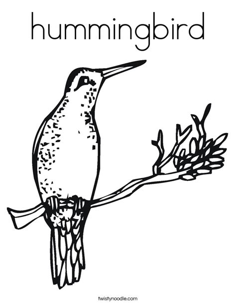 Hummingbird Coloring Page Twisty Noodle Hummingbird Coloring Pages