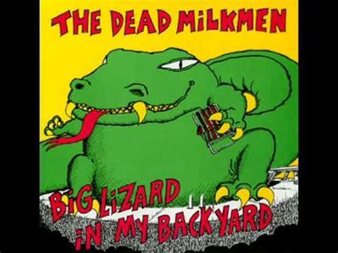 big lizard in my backyard lyrics the dead milkmen tiny town lyrics youtube