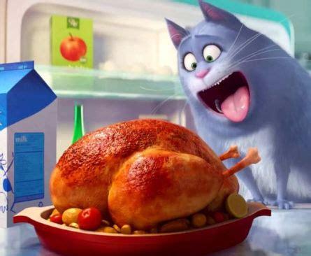 the secret life of pets box office buz box office rolls over for secret life of pets massive