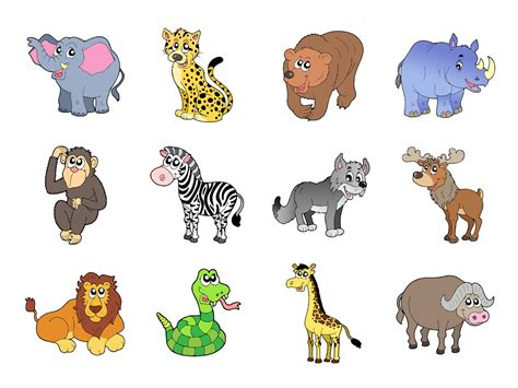 wild animals 1 flashcard video touch wildlife android apps on google play