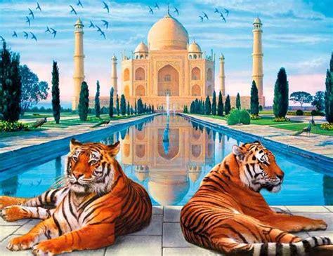 imagenes mitologicas indus taj y tigre india tigre safari bebe tigre rajasthan