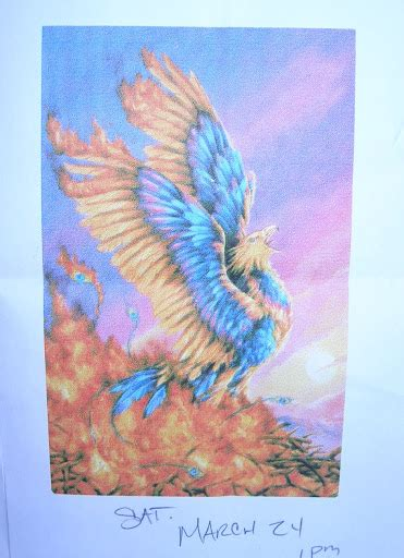 tattoo phoenix miami ink family wallpaper megan joy describes the sleeve