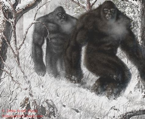 bigfoot west coast a history of gorillas and other monsters in california oregon and washington state books s cryptozoo missing in alaska quot hunted by the