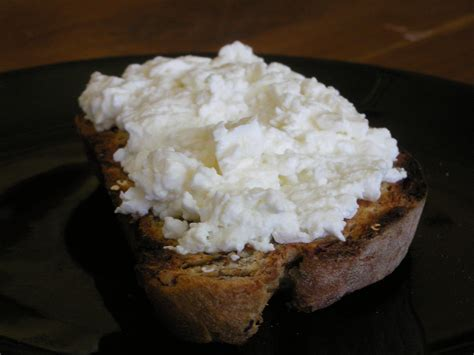 how to make cottage cheese at home sense of things