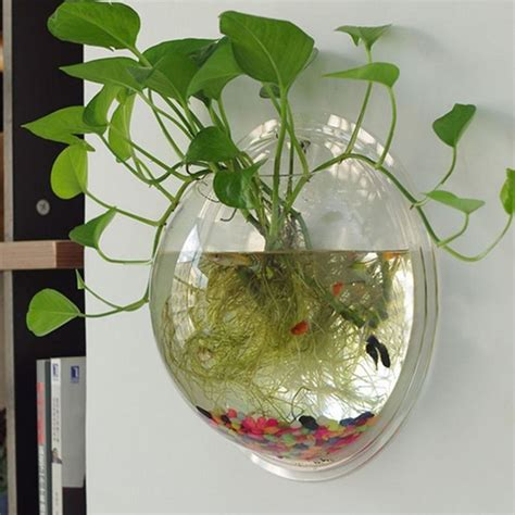 hot sale semicircular wall hanging glass plant flower vase