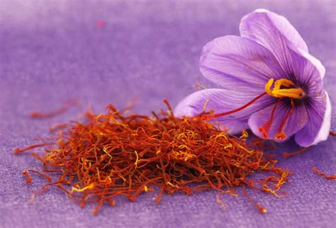 Used Kitchen Cabinet by How To Choose And Use The Best Saffron Foodal