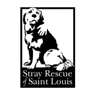 puppy rescue st louis top st louis rescue shelters to find the family 171 cbs st louis