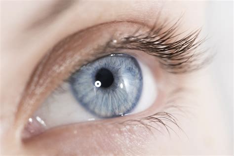 the eyes of the feast your eyes 8 nutrients to help protect your sight cbs news