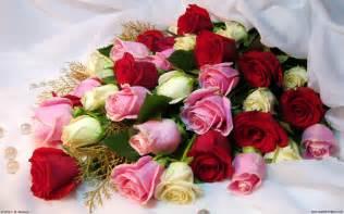 bouquet wallpaper 693599