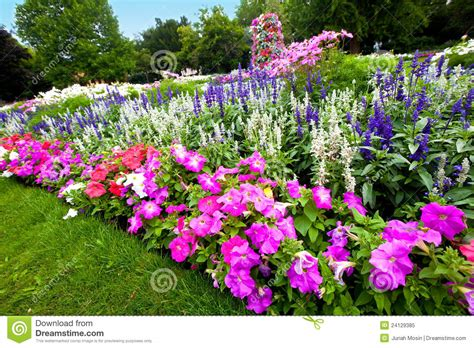 What Is A Flower Garden Manicured Flower Garden With Colorful Azaleas Stock Image Image 24129385