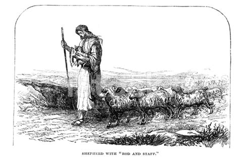 patterns of nature rod and staff shepherd with sheep rod and staff from 1880 journal stock