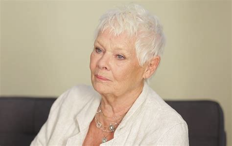 what products to use to get judi dench hair what products to use to get judi dench hair how to get