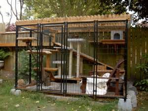 Cats crazy for catios patios for cats means safe outdoor lounging for