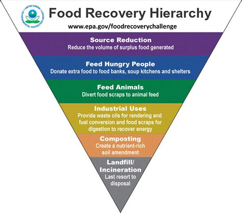 Kitchen Hierarchy Definition Food Waste Or Food Excess