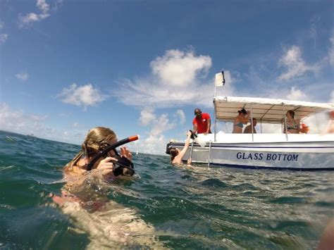 glass bottom boat cape town complimentary snorkeling trip on the hotel s glass bottom