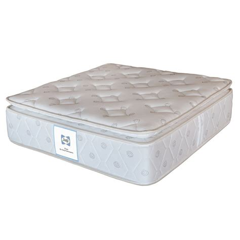Sealy Mattress Firm by Buy Sealy Mattress Firm In India Best Prices Free
