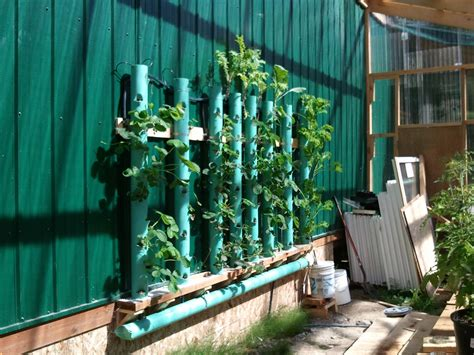 Small Home Hydroponic Systems Small Homestead In Whale Pass Alaska For Sale 171 Vacation