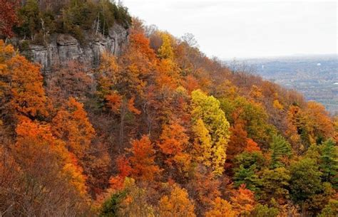 new york state colors fall foliage map best places to see leaves changing color
