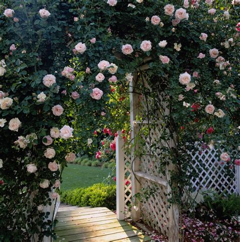 Garden Ideas Pictures Garden Pathway Ideas Pictures Seputarindonesa