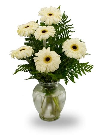 Flowers Delivered Today flowerwyz same day flower delivery same day delivery
