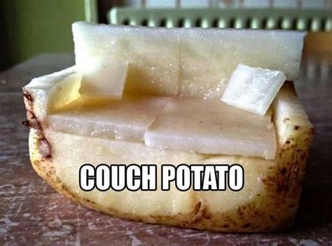 be a couch potato couch potato funny pictures quotes memes funny images