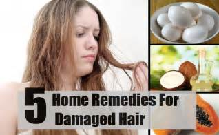 5 home remedies for damaged hair treatments