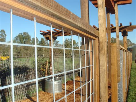 fence on pinterest bamboo fence privacy fences and fencing