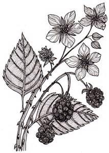 autumn blackberries wyrdsmithing
