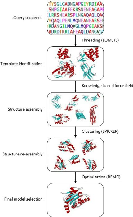 protein 3d structure prediction general workflow of i tasser for protein structure