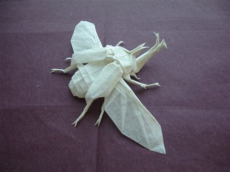 Origami Insects - origami beetle by shuki kato colossal