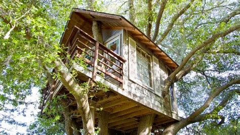 Tree Houses To Live In 12 Luxury Tree Houses You Can Live In