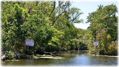 pontoon rentals homosassa florida a pontoon boat ride on homosassa river florida