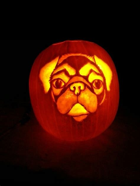 pumpkin pug 17 best images about pug carving stencils on pumpkin carving patterns
