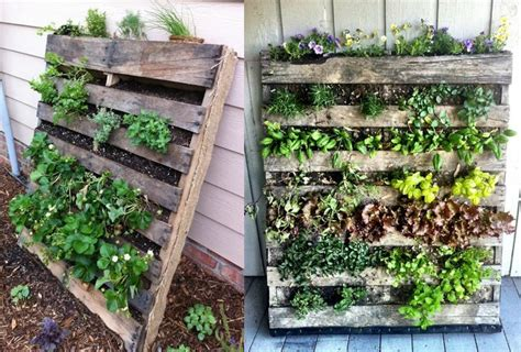 verloren tuinen van heligan e ebooks verticale tuin van paletten in de tuin pinterest