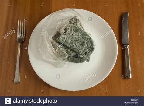 Sandwich Mold moldy sandwich stock photos moldy sandwich stock images
