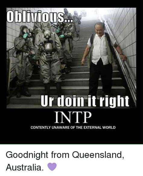 Queensland Memes - oblivious ur doin it right intp contently unaware of the
