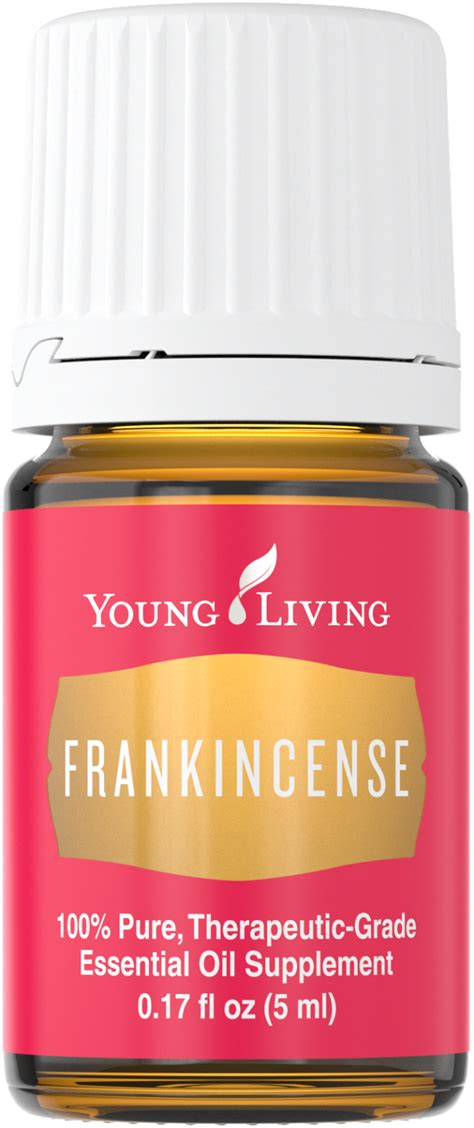 Frankincense Yleo 5ml frankincense living www pixshark images galleries with a bite
