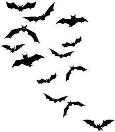 flying bats day and night images pinterest bats