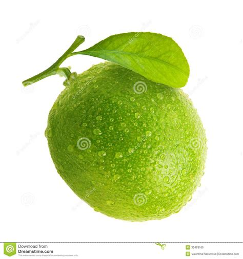 lime green water green lime with water drops stock image image 33493165