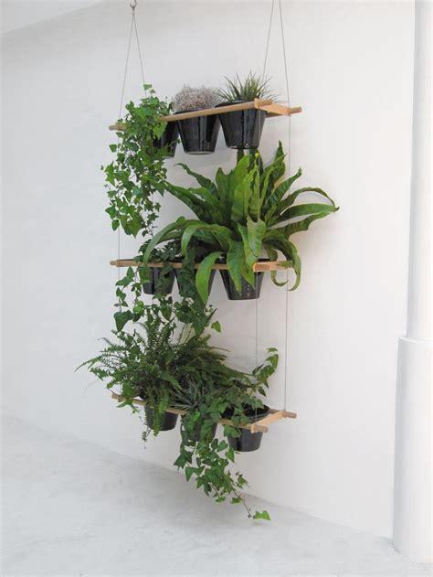 shelves for plants best 25 plant shelves ideas on