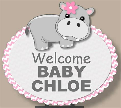 Store Hippo Themes | 1000 images about pink hippo baby shower on pinterest